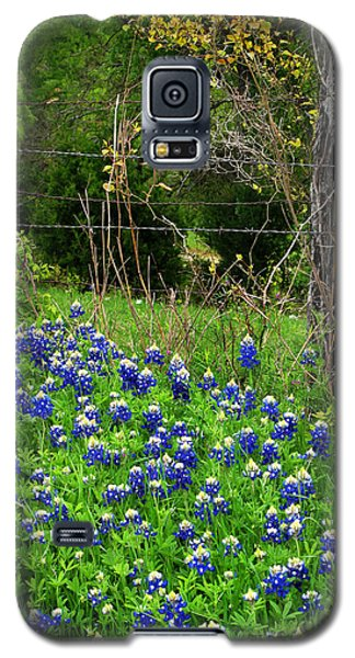 Fenced In Bluebonnets Galaxy S5 Case by David and Carol Kelly