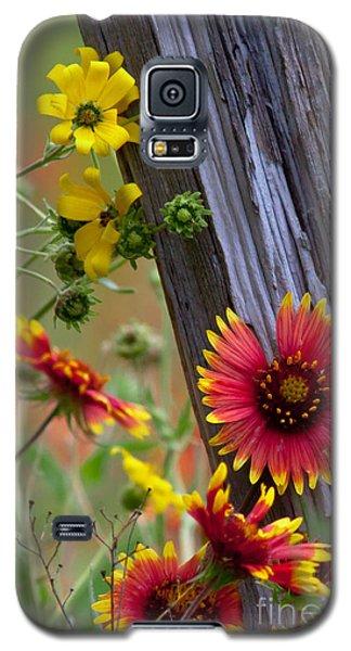 Fenceline Wildflowers Galaxy S5 Case