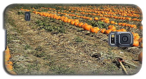 Galaxy S5 Case featuring the photograph Fencing The Pumpkin Patch by Michael Gordon