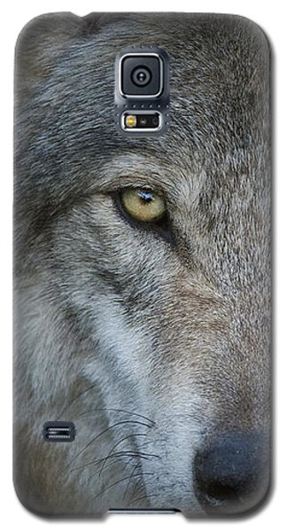 Fenris... Galaxy S5 Case by Nina Stavlund