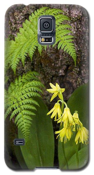 Fern And Wild Flowers Galaxy S5 Case
