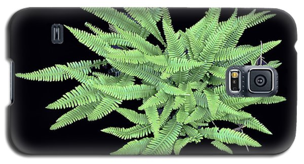 Fern Galaxy S5 Case