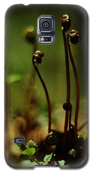 Fern Emergent Galaxy S5 Case