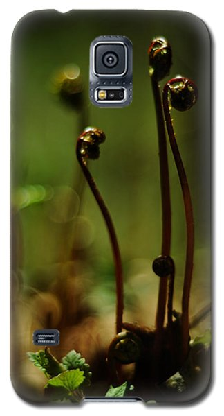 Fern Emergent Galaxy S5 Case