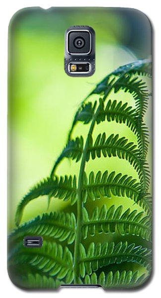 Fern Leaves. Healing Art Galaxy S5 Case