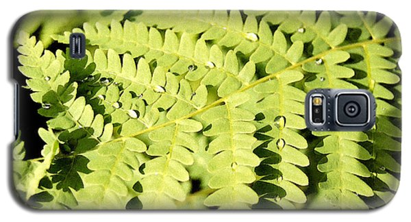 Galaxy S5 Case featuring the photograph Fern With Dew by Mary Bedy