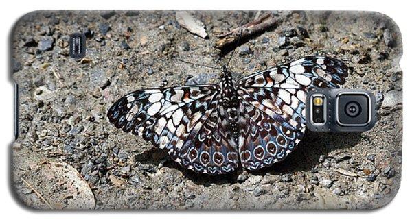 Feronia Cracker Butterfly Galaxy S5 Case