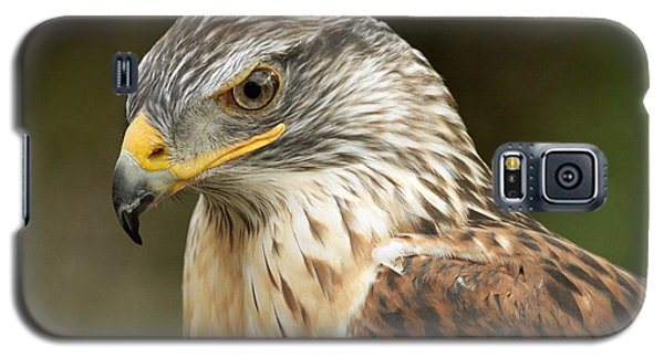 Galaxy S5 Case featuring the photograph Ferruginous Hawk by Doug Herr