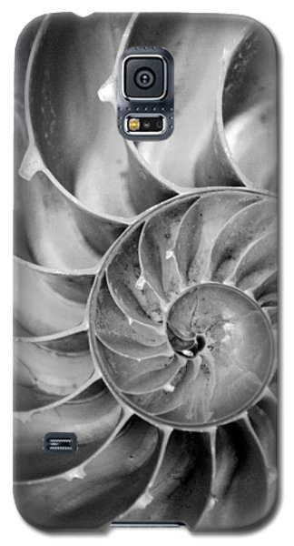 Fibonacci Galaxy S5 Case by Kjirsten Collier