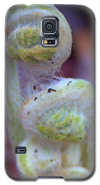 Fiddlehead Fern Galaxy S5 Case
