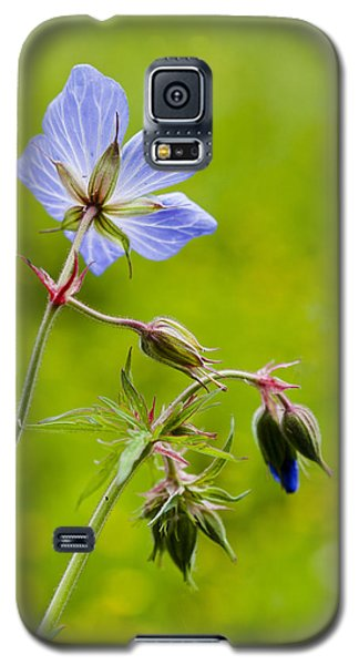 Galaxy S5 Case featuring the photograph Field Geranium by David Isaacson