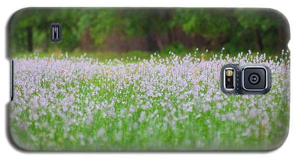 Field Of Flowers Galaxy S5 Case