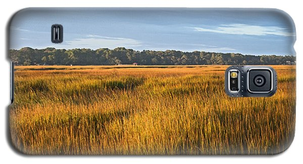 Galaxy S5 Case featuring the photograph Field Of Gold Lan 358 by G L Sarti