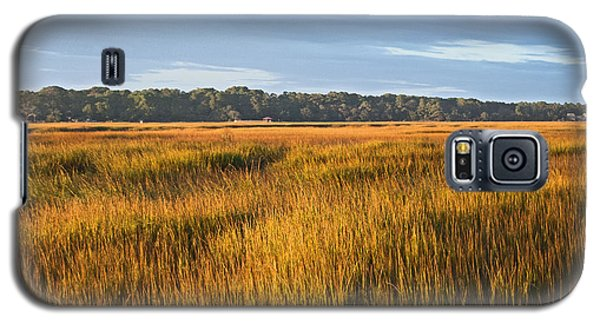 Field Of Gold Lan 358 Galaxy S5 Case by G L Sarti