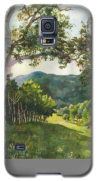 Field Of Light At Caribou Ranch Galaxy S5 Case