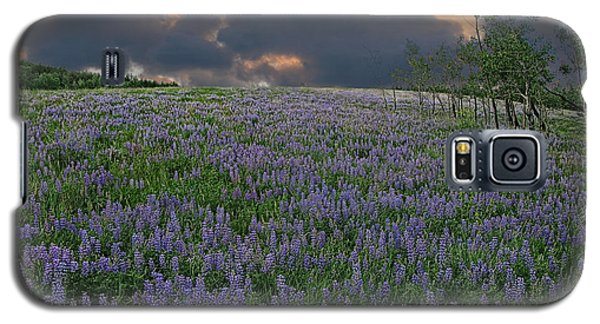 Field Of Lupine Galaxy S5 Case