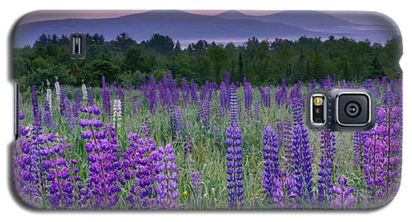 Field Of Purple Galaxy S5 Case
