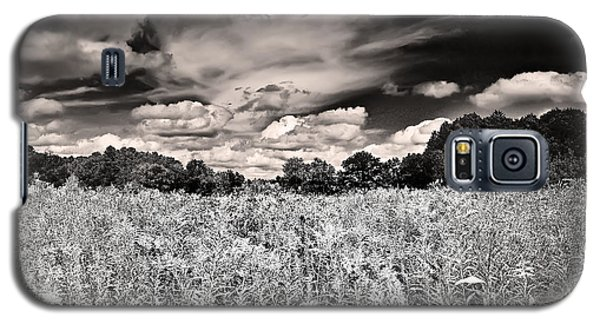 Fields Of Gold And Clouds Galaxy S5 Case by Mitchell R Grosky