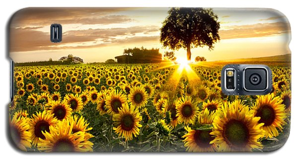 Fields Of Gold Galaxy S5 Case by Debra and Dave Vanderlaan