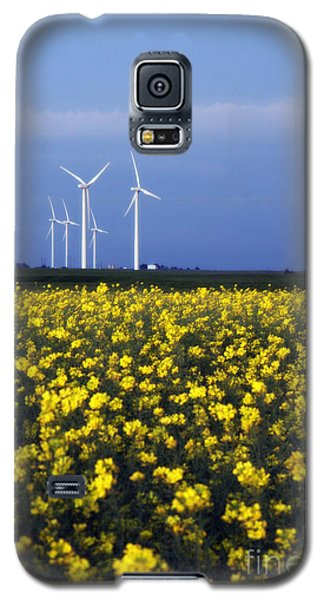 Fields Of Gold Galaxy S5 Case by Jim McCain
