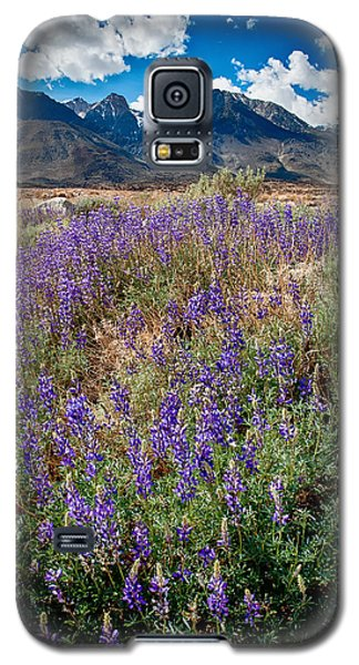 Fields Of Lupine Galaxy S5 Case