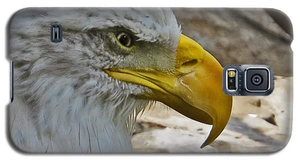 Fierce Eagle Galaxy S5 Case