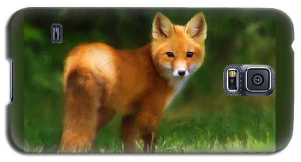 Fiery Fox Galaxy S5 Case by Christina Rollo