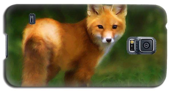 Fiery Fox Galaxy S5 Case