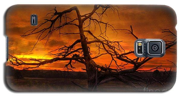 Fiery Sunrise Galaxy S5 Case