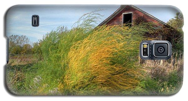 Fiery Weed And Barn Galaxy S5 Case by Deborah Smolinske