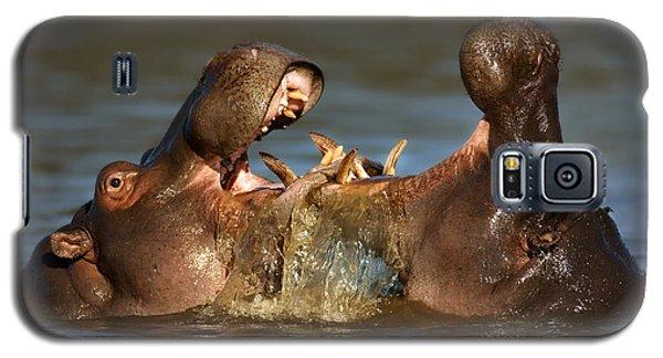 Fighting Hippo's Galaxy S5 Case by Johan Swanepoel