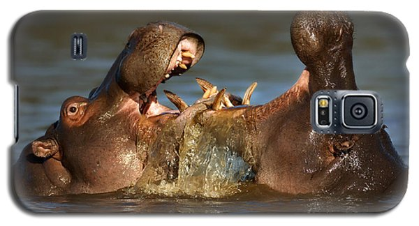 Fighting Hippo's Galaxy S5 Case by Johan Swanepoel