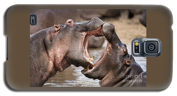 Fighting Hippos Galaxy S5 Case by Richard Garvey-Williams