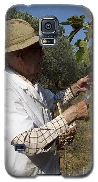 Fig's Harvest In Loppiano Galaxy S5 Case