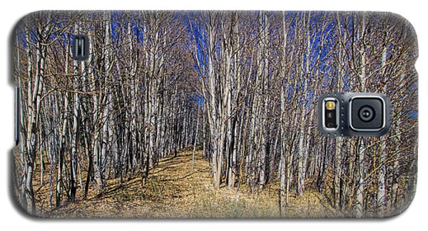 Galaxy S5 Case featuring the photograph Final Aspen by Stephen  Johnson