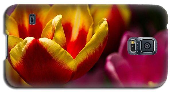 Finally Spring Galaxy S5 Case