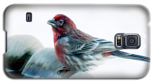 Galaxy S5 Case featuring the digital art Finch by Ann Lauwers
