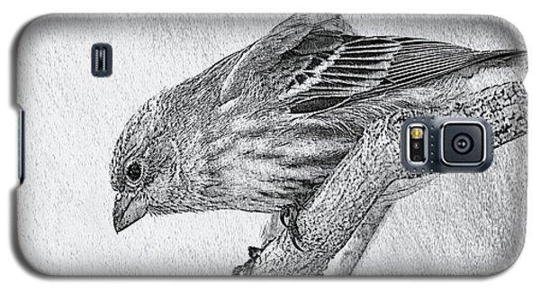 Finch Digital Sketch Galaxy S5 Case