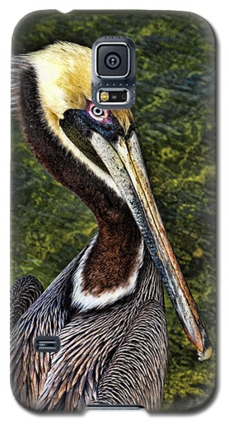 Pelican Close Up Galaxy S5 Case