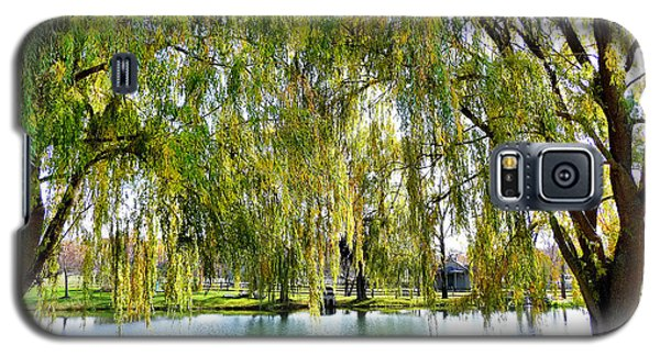Finger Lakes Weeping Willows Galaxy S5 Case by Mitchell R Grosky