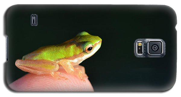 Finger Tip Baby Frog Galaxy S5 Case