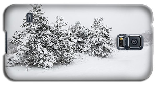 Fir Trees Covered By Snow Galaxy S5 Case