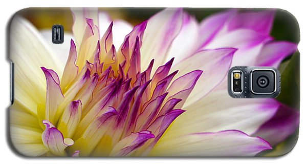 Galaxy S5 Case featuring the photograph Fire And Ice - Dahlia by Jordan Blackstone