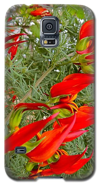Fire Flowers Galaxy S5 Case