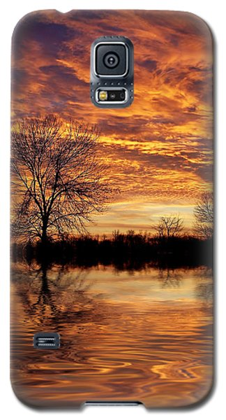 Fire Painters In The Sky Galaxy S5 Case by Bill Pevlor