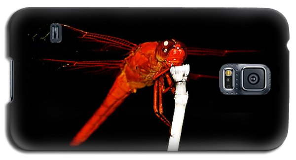 Galaxy S5 Case featuring the photograph Fire Red Dragon by Peggy Franz