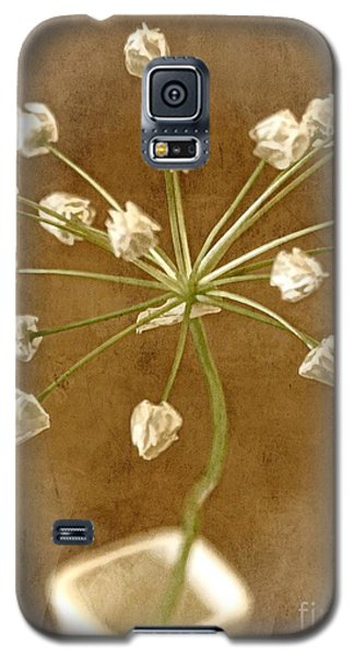 Firecracker Galaxy S5 Case by Peggy Hughes
