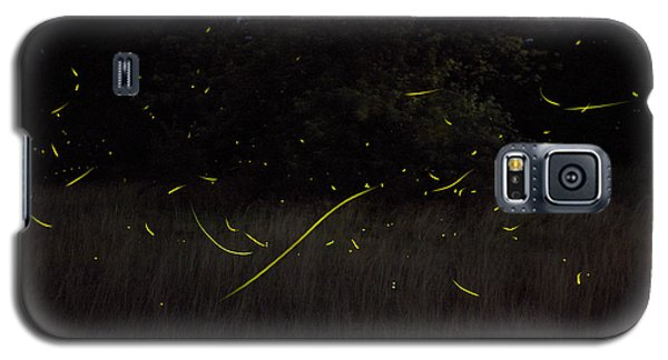 Firefly Traces On A Summer Night Galaxy S5 Case