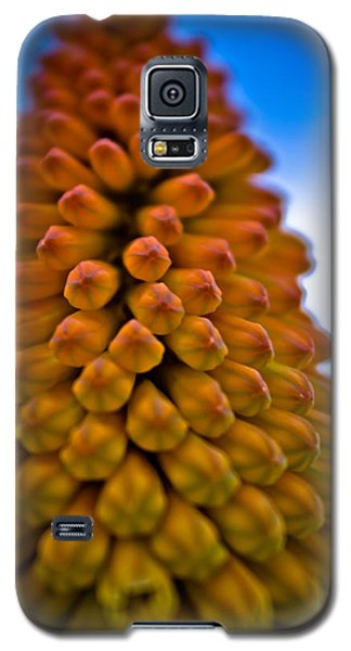 Firepoker Galaxy S5 Case by Joel Loftus