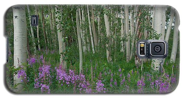Fireweed And Aspen Galaxy S5 Case